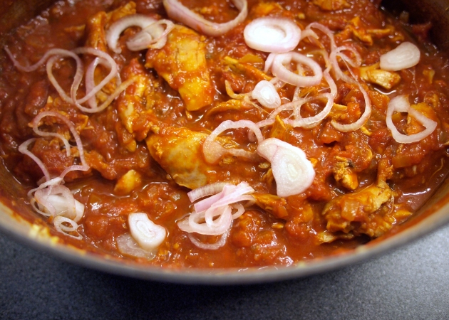 Mexican Chicken Stew with zingy onions